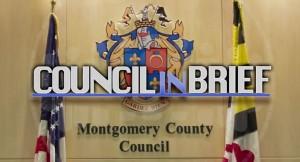 Council in Brief logo