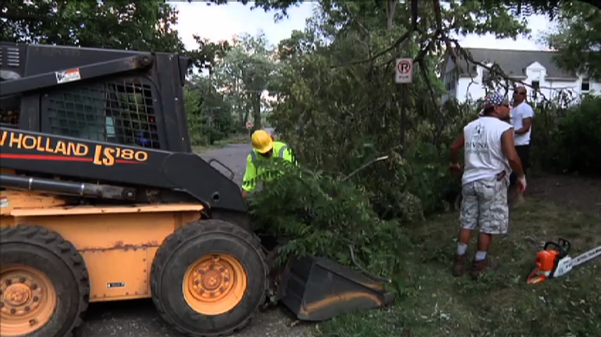 Image of contractor removing fallen trees