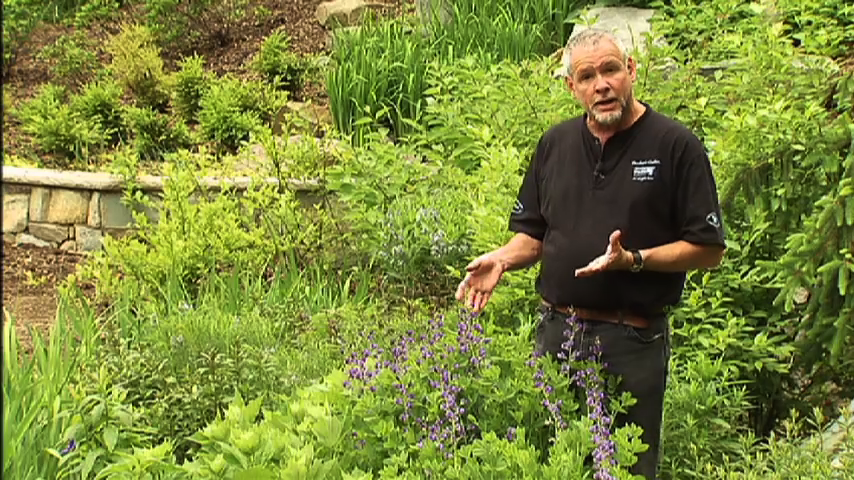 Brookside Gardens rainwater management