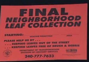 Red sign indicating final leaf collection