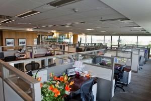 Open Office Space Design