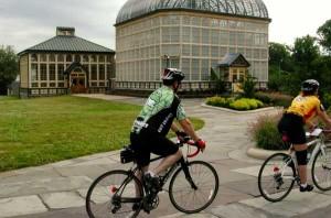 Arboretum in Druid Hill  Park