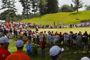 crowdsgrowing
