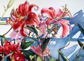 <em>Star Gazer Lilies</em> by Sue Moses Photo | Potomac Valley Watercolorists