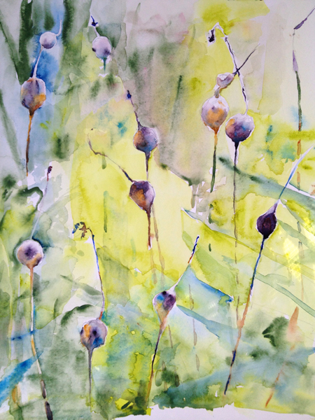 Pods by Leigh Culver Photo | Potomac Valley Watercolorists