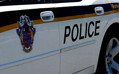 mc police car for slider 450x280