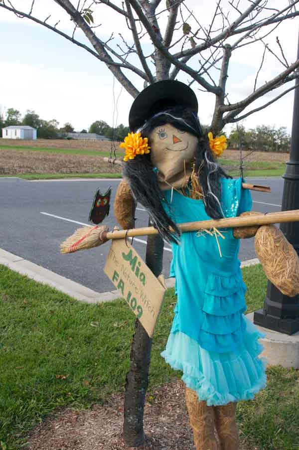 Poolesville MD - Sights and Scenery around the town