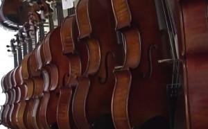 Violins 450x280