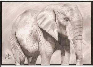elephant_by_josef_semon-d3aa659