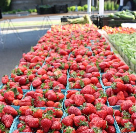 photo strawberries at rockville farmers market