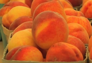 photo of fresh peaches