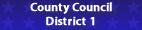 council district 1 color.fw