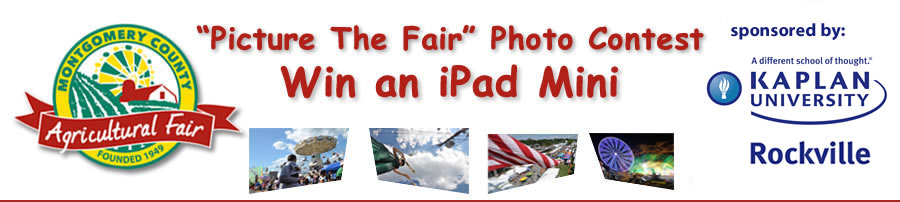 Picture Fair Photo Contest logo for post 590w