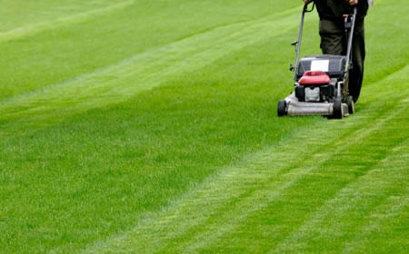 Lawn Mowing 450x280