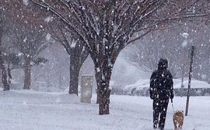 Snow Scene FB cover 450x280