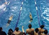 Teammates cheer on a relay team.