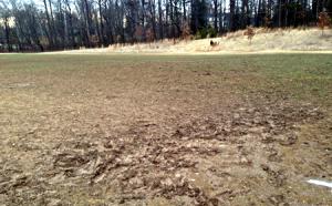 muddy athletic fields 450x280