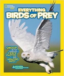 bc everything birds of prey