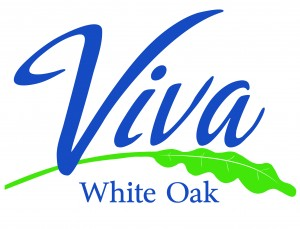 Viva 2 color logo 7.27.15 high res-01